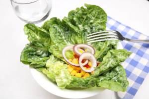 Schneller Beilagen Salat Romanasalat mit einem einfachen Senf Dressing