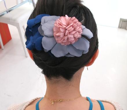 hair_clip12