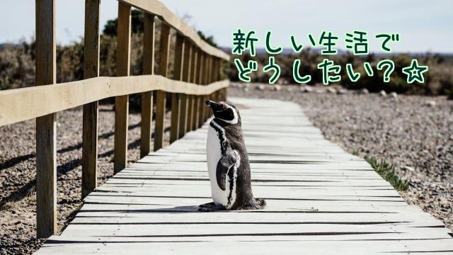 新しい生活でどうしたい?と書いたペンギンの写真画像