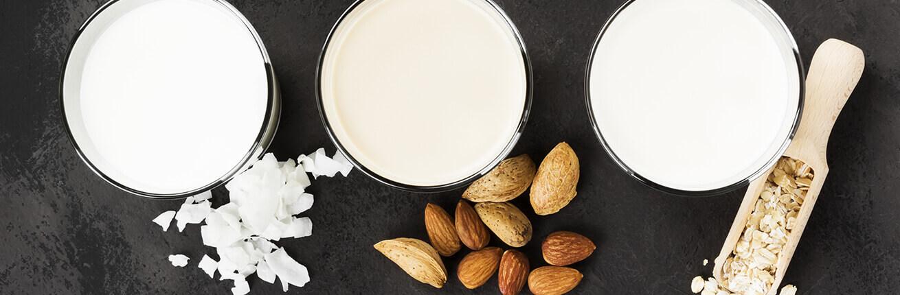 Laktosefrei und glutenfrei & zuckerfreie Ernährung & Produkte online kaufen! Lebensmittel Laktosefrei und glutenfrei sowie frei von Zucker im Shop kaufen!