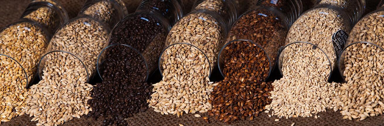 Maltit bestellen & kaufen. Zuckerfreie Lebensmittel & Produkte mit Maltit kaufen! Große Auswahl an zuckerfreien Lebensmitteln & Produkten, hier im Shop!