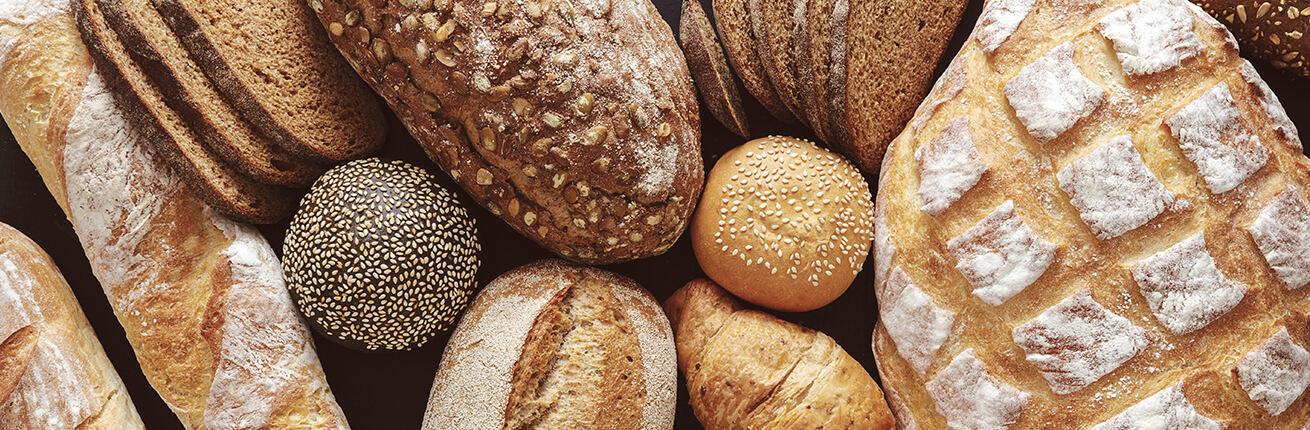 Low Carb Brot kaufen im Online Shop. Kohlenhydrate reduziertes Brot kaufen! Low Carb Knäckebrot (Filinchen, Atkins) bestellen. Low Carb Brot günstig kaufen