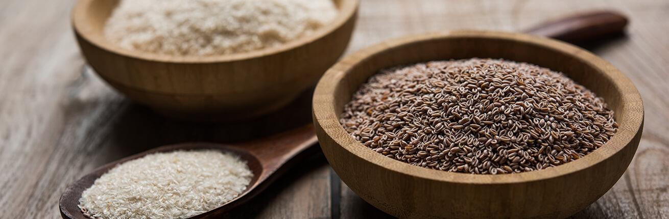 Flohsamenschalen kaufen. Flohsamenschalen für Low CarbErnährung. Flohsamenschalen zum Abnehmen, Flohsamenschalen bei Diäten & Verdauungsproblemen kaufen!