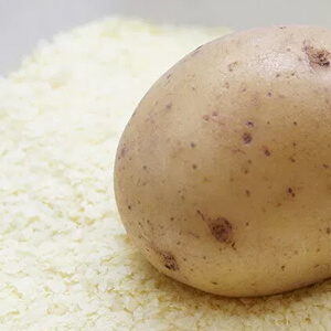 Low Carb Kartoffelfasern