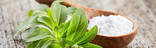 Zuckerfreie Lebensmittel gesüßt mit Stevia. Stevia Schokolade, Stevia Pralinen, Stevia Produkte kaufen. Lebensmittel ohne Zucker kaufen.
