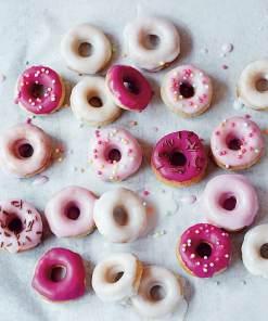 Treats Text 120pp 22 - Mini doughnut