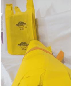 Screenshot 2021 04 06 13 43 46 - Non Woven U-cut Bags 50pcs