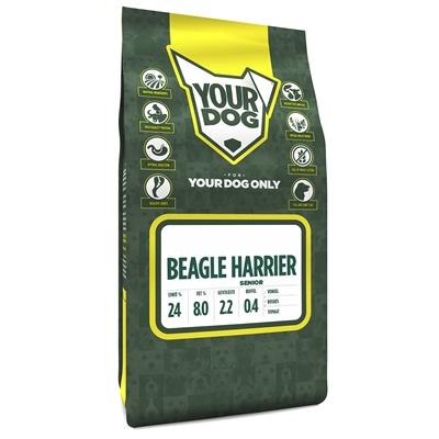 Yourdog beagle harrier senior