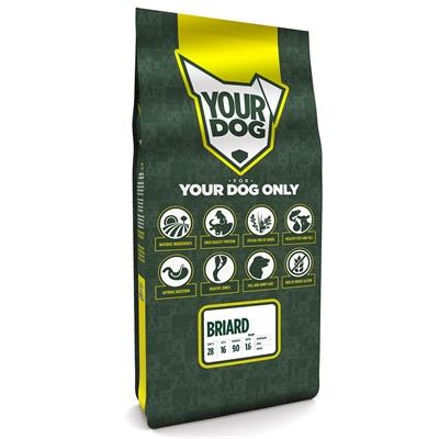 Yourdog briard pup