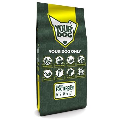 Yourdog fox terriËr draadhaar pup