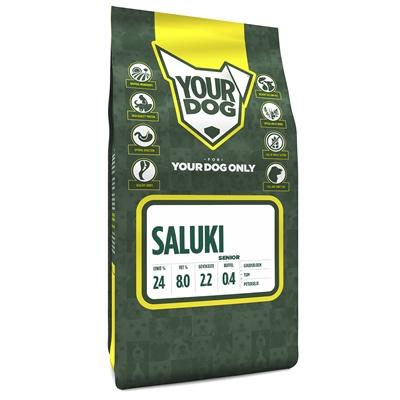 Yourdog saluki senior