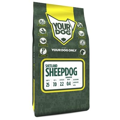 Yourdog shetland sheepdog senior