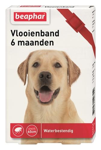 Beaphar vlooienband hond rood 6 mnd