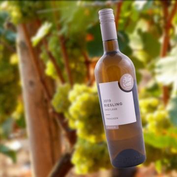 225 Alde Gott Riesling Spätlese 2019, badischer Weißwein trocken, 0,75l