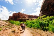 Stay at Our RV Park While Hiking Badger Trail