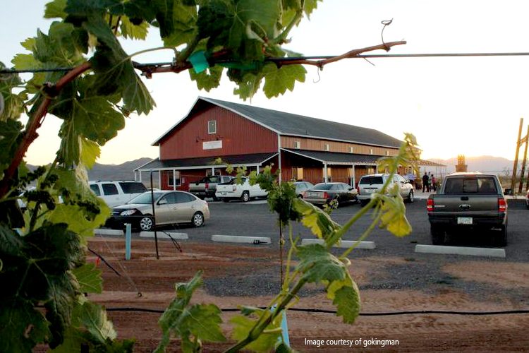 Stetson Winery Tours and Tastings