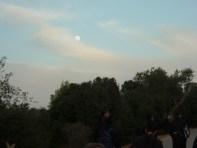 san Giovanni in deserto 21.10 144 (Medium)