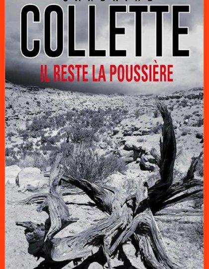 Sandrine Collette (2016) - Il reste la poussière