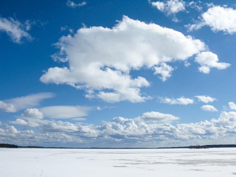 Zuri_Zuberi_winter_weather