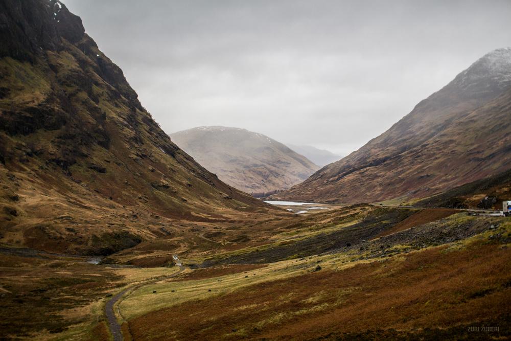 Zuri_Zuberi_Scottish_Highlands_5