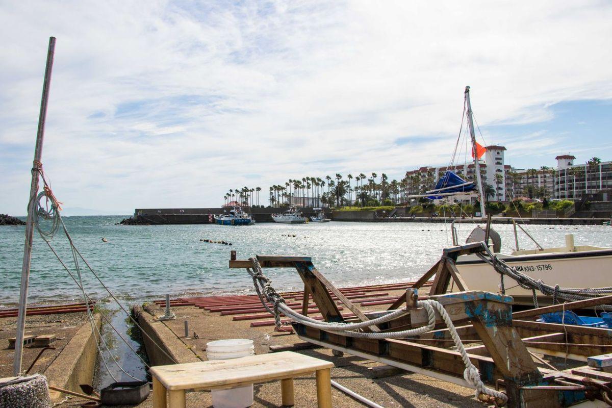 逗子で唯一の漁港、小坪漁港で釣りをしてきた