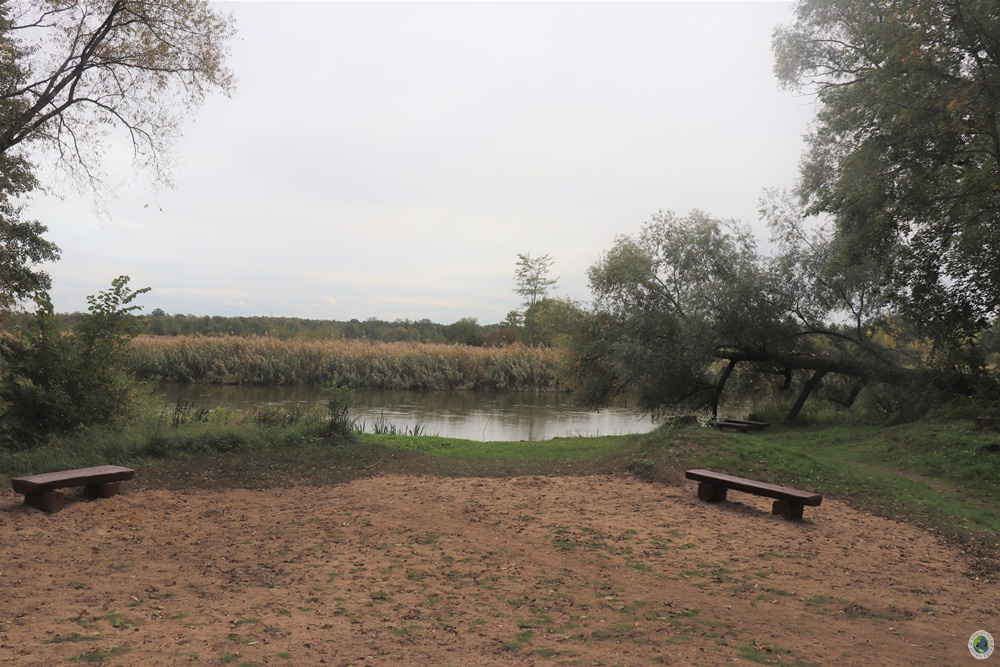 Park na Winiarach