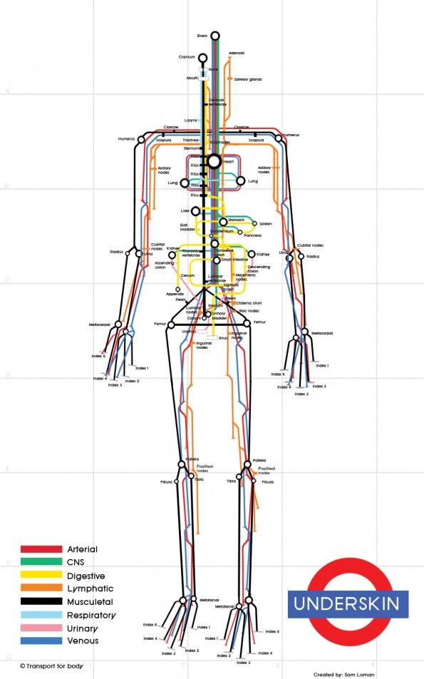 Gorputzaren mapa, metroko ibilbideetan