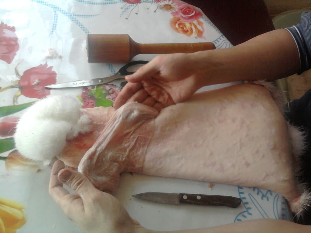 Ting fra kanin pels varm, smuk, hvad enten det er en smuk hætte fra en fælles kanin pels eller et smukt kappe af chinchilla.