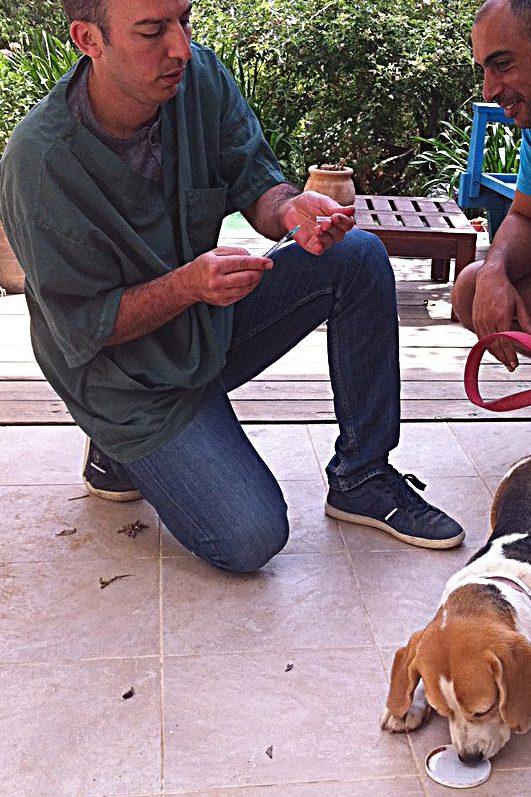 וטרינר בקיסריה – ביקור בית