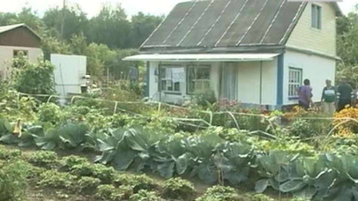 Бесплатная приватизация садовых (дачных) и огородных участков  продлена до 1 марта 2022 года