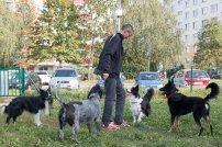psia-zoznamka-na-zapade-12