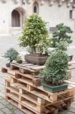 bonsaje-zvolen-zamok-19
