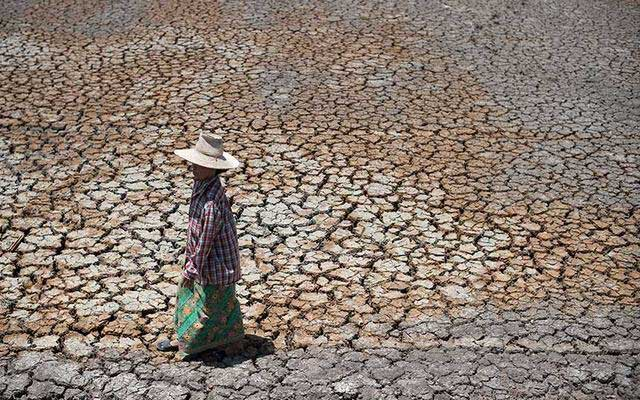 Farmers-in-Thailand's-rice-growing-Suphan-Buri-province-are-becoming-increasingly-desperate-for-water-to-irrigate-their-fields-as-they-suffers-worst-drought-in-more-than-a-decade.