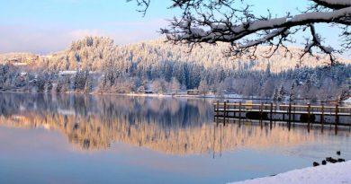 Unser Paradies für ein paar Tage: Der Titisee im Hochschwarzwald