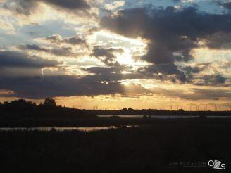 Sonnenuntergang von der Bahn aus...