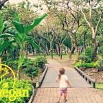 Vegane Kinderernährung – Wie du durch Essen für Gesundheit sorgst