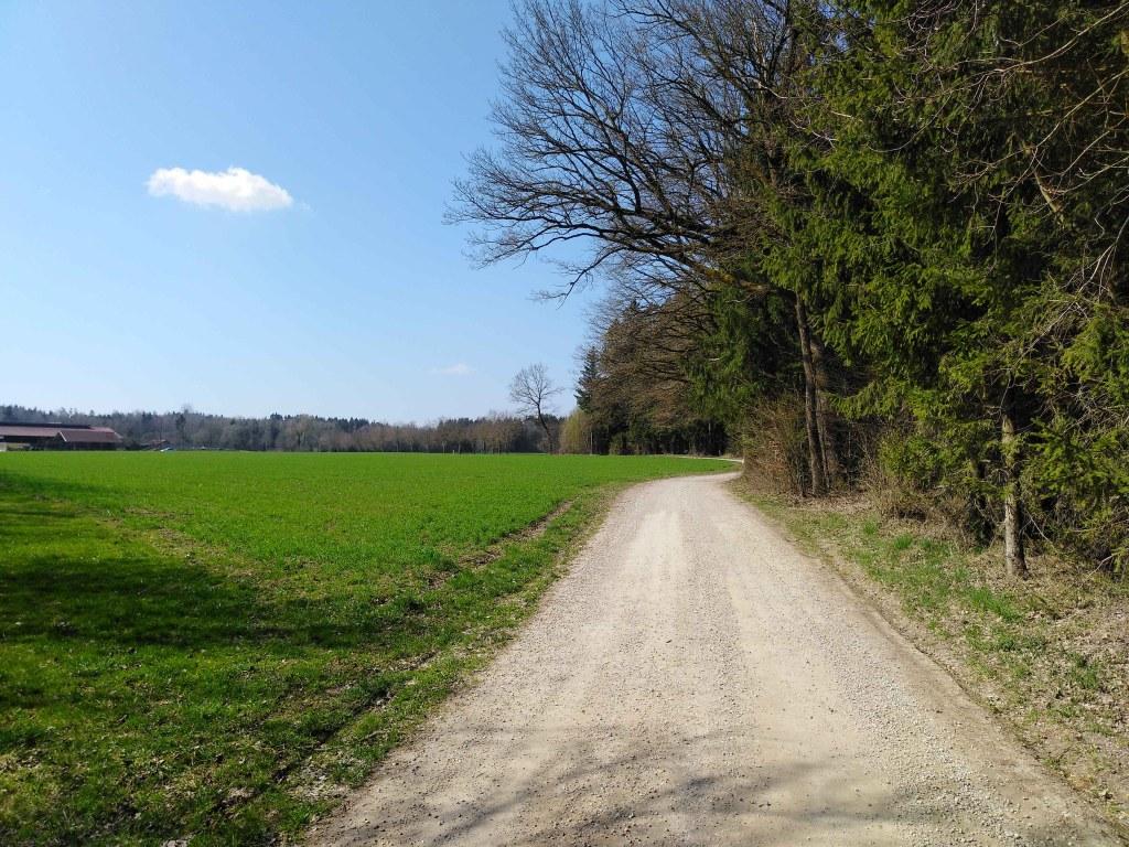 Auf dem Jakobsweg - Breite Wege