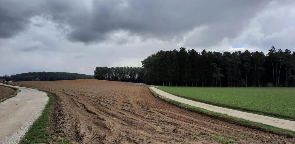 Das Feld, auf dem einst der Hof von Hinterkaifeck stand
