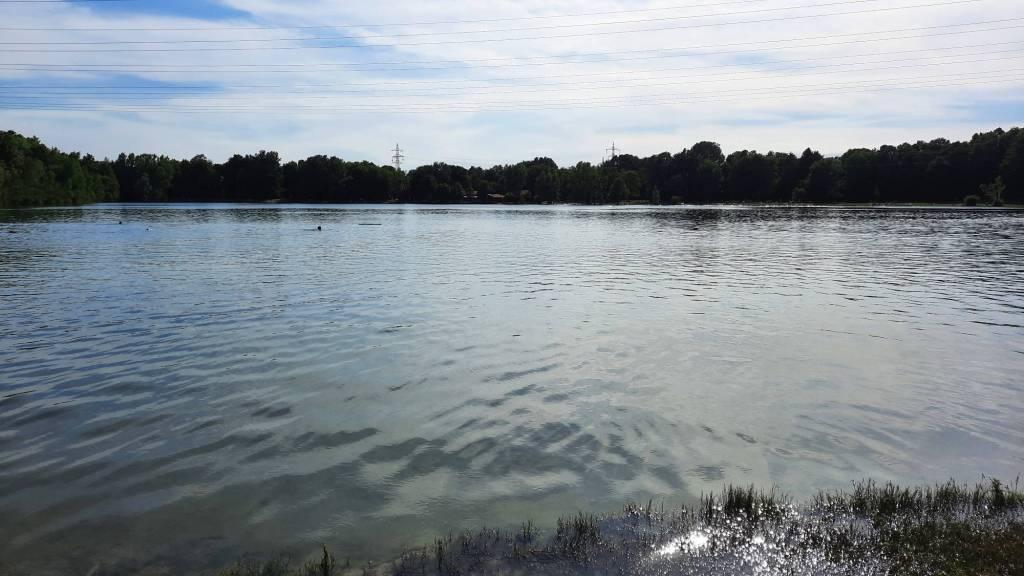 Schwimmen unter Strom im Unterschleißheimer See