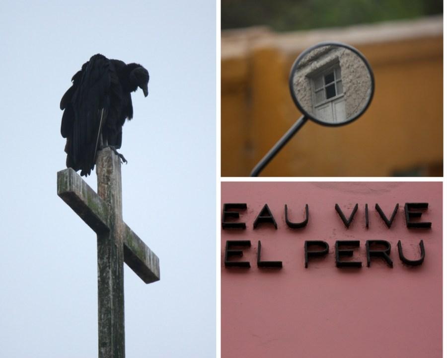 Bunte Wände, schwarze Geier und überall Leinwände, die diese festhalten: Barranco ist das Künstlerviertel Limas.