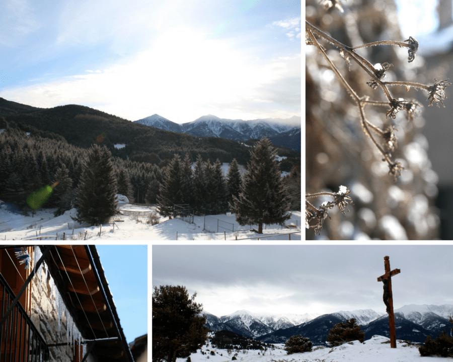 Winterzauber in La Llagone: Blüten, Tannen und Eiszapfen funkeln in der Januarsonne.