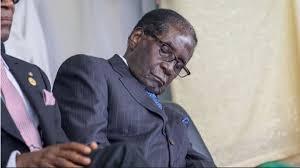 Robert Mugabe death unites people?