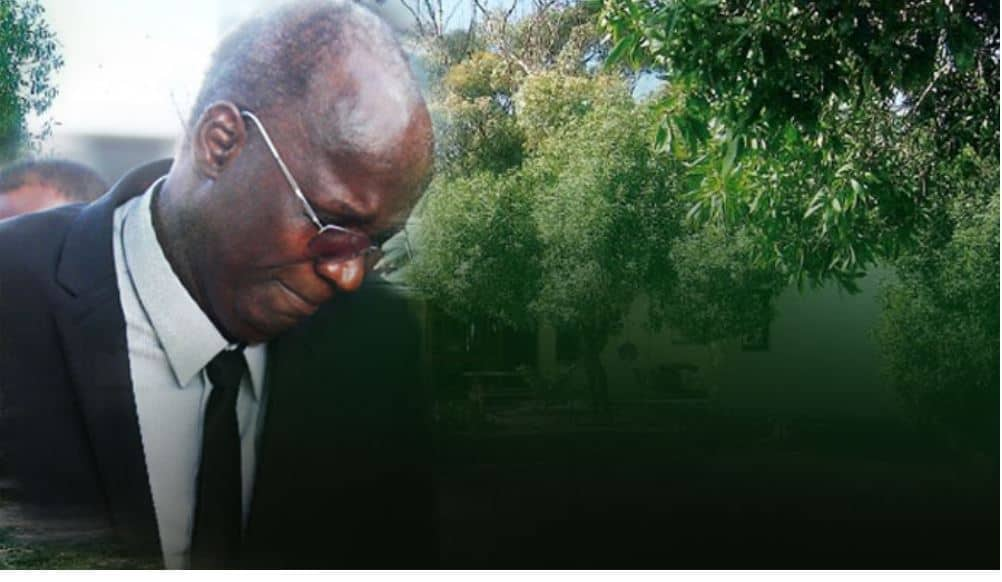"ED Mnangagwa ""still wants to kill"" Prof Jonathan Moyo: Report"