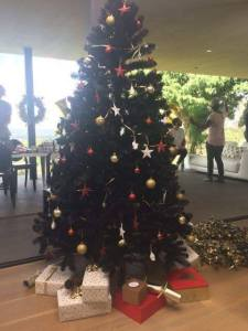 Picture: The Mugabes celebrate Christmas in Asia: 25-12-16
