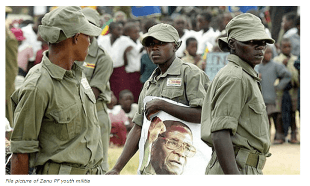 Mugabe youths evict 'disloyal' war veterans from farms