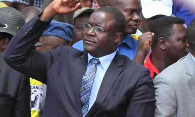 VIDEO: Mnangagwa screams at Mutodi, Charamba, Mangwana as sanctions marches flop