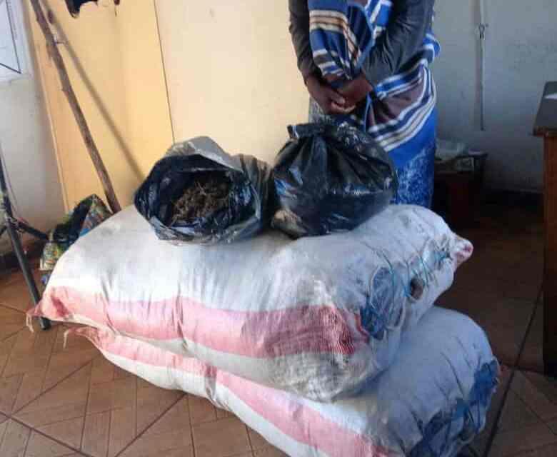 Businesswoman arrested with 52KG of mbanje