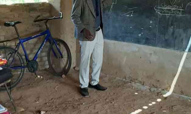 Anti-Mnangagwa Teacher Slapped With Punishing, Forced Transfer