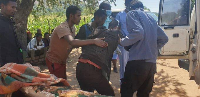 15 Illegal Ethiopians caught hiding in Gwanda village, Arrested, tested for coronavirus, quarantined