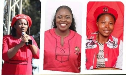 WATCH: ED Government Taken to Court over Abducted MDC Alliance Trio